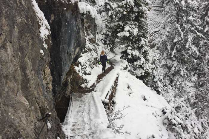 Winter Hikes and Walks Outdoor adventures Munich Bavaria Alps